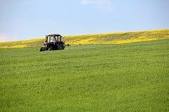 Traktor som besprutar vetefältet i vår Arkivbilder