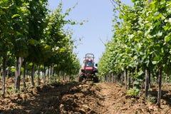 Traktor som besprutar vingården Royaltyfria Bilder
