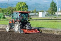 Traktor som brukar en risfält Arkivfoto