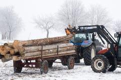 Traktor som fungerar med Treestammar Arkivfoton