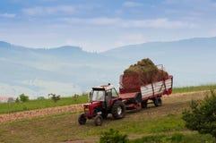 Traktor som transporterar det samlade gräset arkivbild