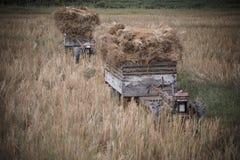 Traktor & trans. Royaltyfria Bilder