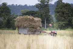 Traktor & trans. Royaltyfria Foton