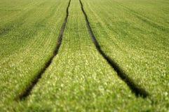 Traktor-trilha Foto de Stock
