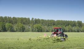 Traktor und Gras Turner funktionieren in der niederländischen Wiese in der Provinz von Südholland in den Niederlanden Lizenzfreie Stockfotografie