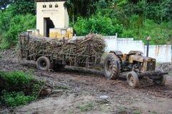 Traktor voll von Sugar Cane Lizenzfreies Stockfoto