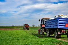Traktorarbeit über das Feld Düngemittel im Frühjahr auftragen Stockbilder