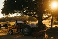 Traktoren auf einem Gebiet stockbilder