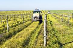 Traktoren, die den Weinberg sprühen Lizenzfreie Stockbilder