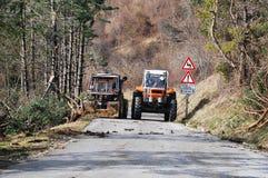 Traktoren, die Raureif schädigende Bäume klären Stockbild