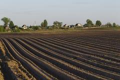 Traktoren i fältet på jordbruks- operationer Arkivfoto
