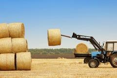 Traktoren lastar av baler av hö i fältet Royaltyfri Bild