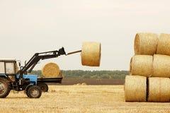 Traktoren lastar av baler av hö i fältet Arkivbilder