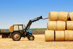 Traktoren lastar av baler av hö i fältet Arkivfoto