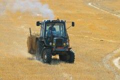 Traktoren mejar i ett fält Arkivbilder