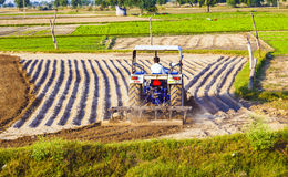 Traktoren plogar fältet Arkivbild