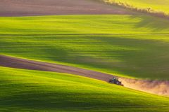 Traktoren plogar fältet på våren Arkivfoton