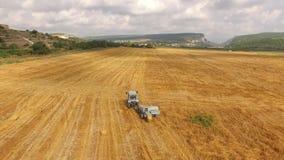 Traktoren rider i fältet med den skördade skörden Fågel`-s-öga arkivfilmer