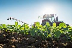 Traktoren som besprutar sojabönan, kantjusterar med bekämpningsmedel och växtbekämpningsmedel