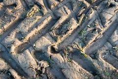 Traktorhjulspår i lerajordning Royaltyfria Foton