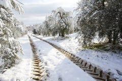 Traktorimpressen   auf einer Landstraße im Schnee lizenzfreie stockfotografie