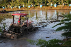 Traktorpflügen Stockfoto