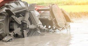 Traktorpflug im Reis Stockfoto
