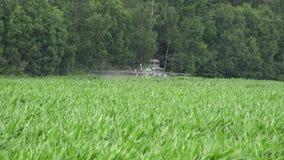 Traktorsprej gödslar majshavrefältet med bekämpningsmedlet nära skogen 4K stock video