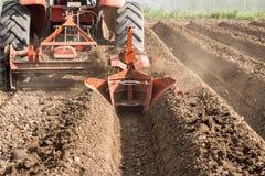 Traktorvorbereitungsboden, der auf dem Gebiet arbeitet Stockbilder