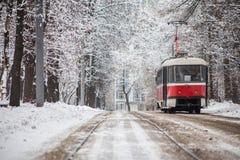 Tram de la Russie sur le parc Image libre de droits