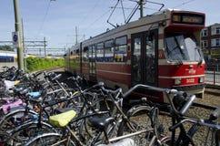 Tram den Haag Netherlands Royalty Free Stock Images