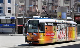 Tram di Colourfull in Osijek, Croazia Fotografia Stock