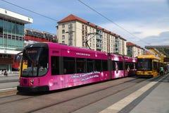 Tram di Dresda Immagini Stock