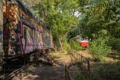 Tram en oude tram in bos stock afbeelding