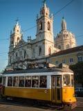 Tram in Estrela Stock Photos