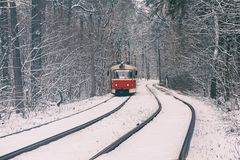 Tram in the forest Stock Photography