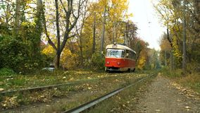 Tram forest autumn park trees. Railway stock video