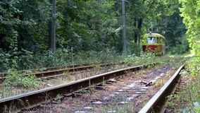 Tram in forest stock footage