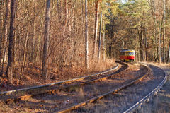 Tram in forest Royalty Free Stock Photos