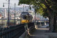 Tram giallo Fotografie Stock Libere da Diritti