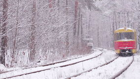 Tram go through the winter wood. stock footage