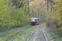 Tram goes through a tunnel in the forest Stock Photos