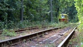 Tram im Wald stock footage