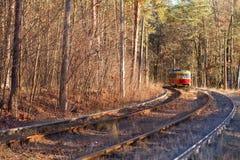 Tram im Wald lizenzfreie stockfotos
