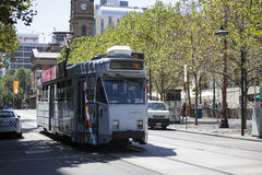 Tram in Melbourne City Stock Photo