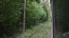 Tram moving in green forest. Moving tram in green forest in summer stock video footage
