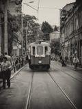 Tram parade Stock Image
