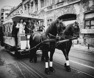 Tram parade. Old tram with horses at Tram Parade in Bucharest, celebration 100 years of public transportation Royalty Free Stock Image