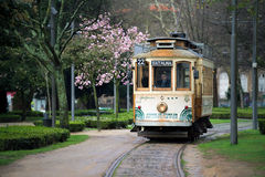 A tram in a park Royalty Free Stock Photo