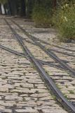 Tram rails on cobblestone Royalty Free Stock Images